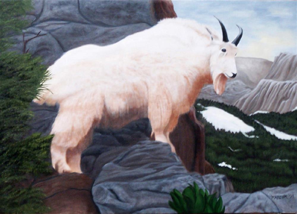 """View From the Top"" original fine art by John Marcum"