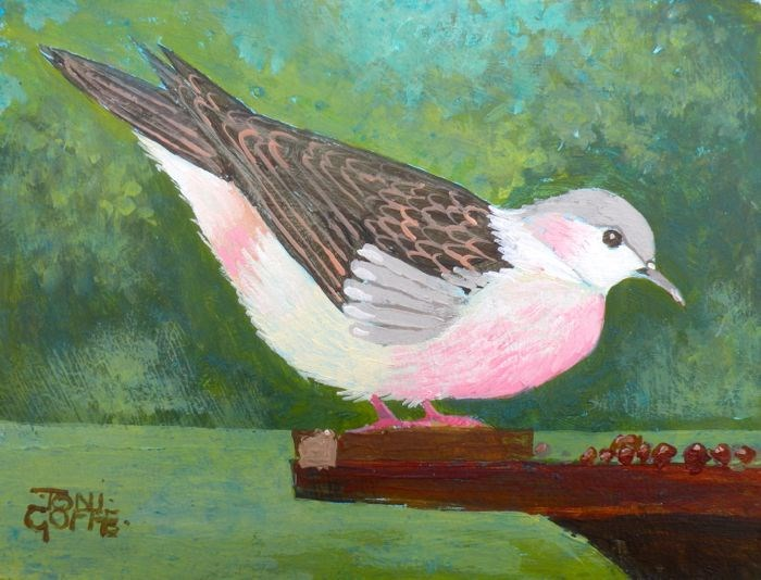 """Turtle Dove"" original fine art by Toni Goffe"