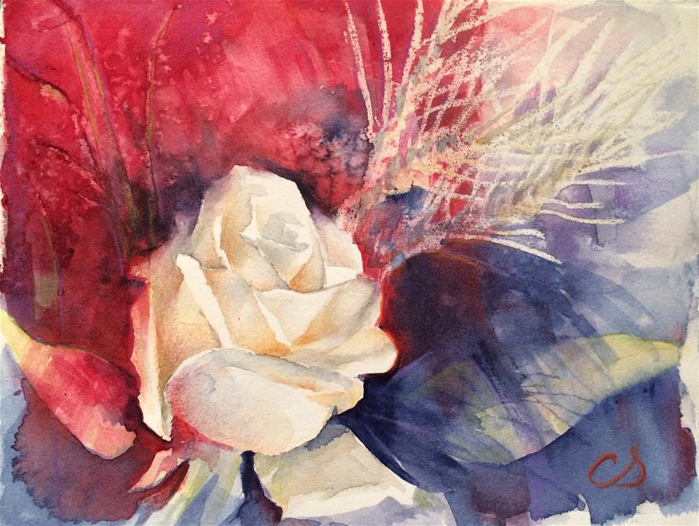 """White Rose"" original fine art by Claudia Selene"