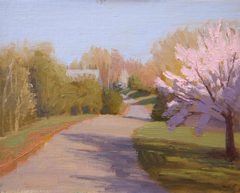"""#108 Cherry blooms"" original fine art by Nancy Wallace"