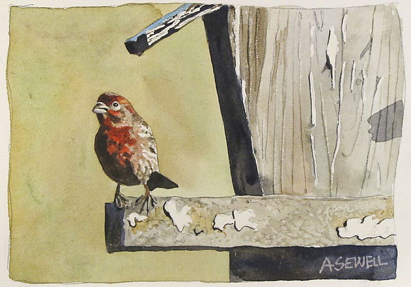 """F is for Finch"" original fine art by Andy Sewell"
