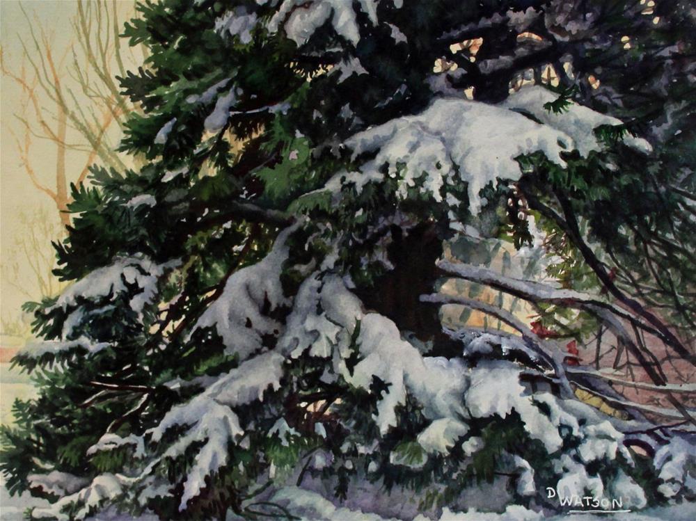 """Tiny Cardinals Big Pine Tree"" original fine art by Deb Watson"