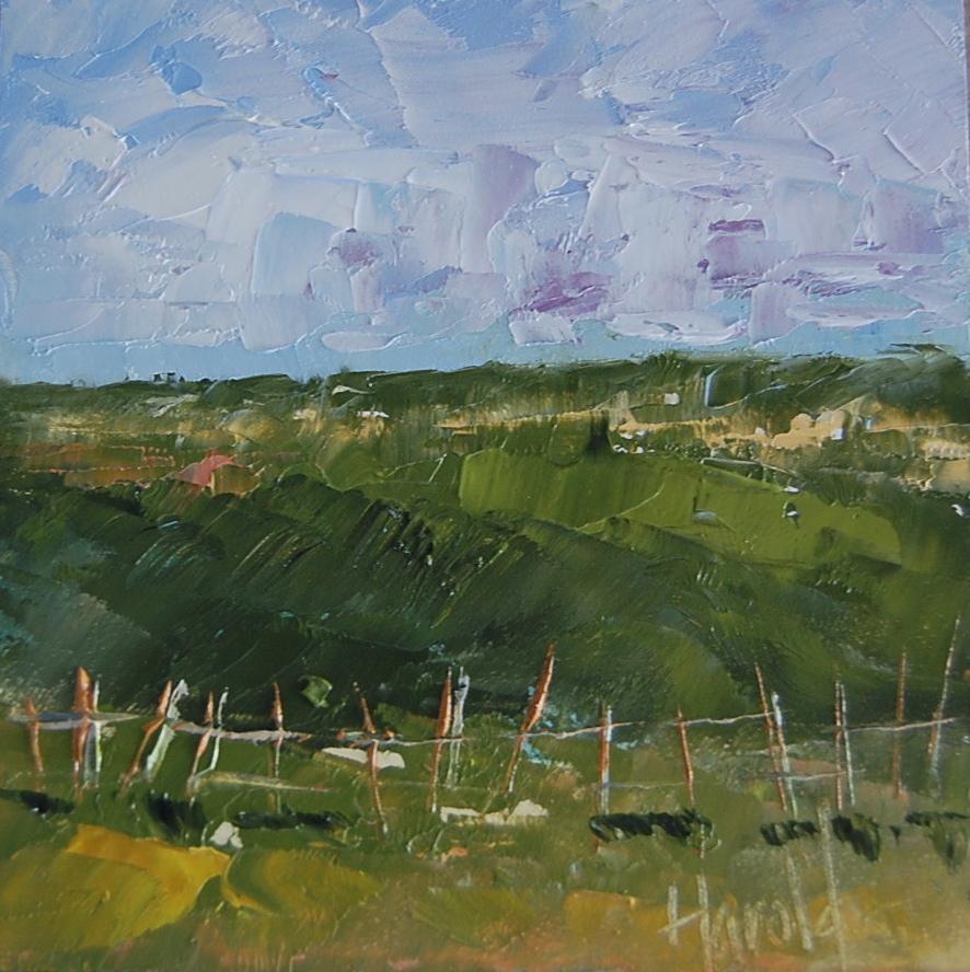 """""""Fences"""" original fine art by Deborah Harold"""