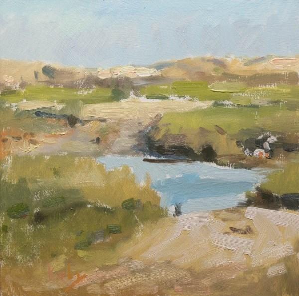 """South end Waterhole"" original fine art by Randall Cogburn"