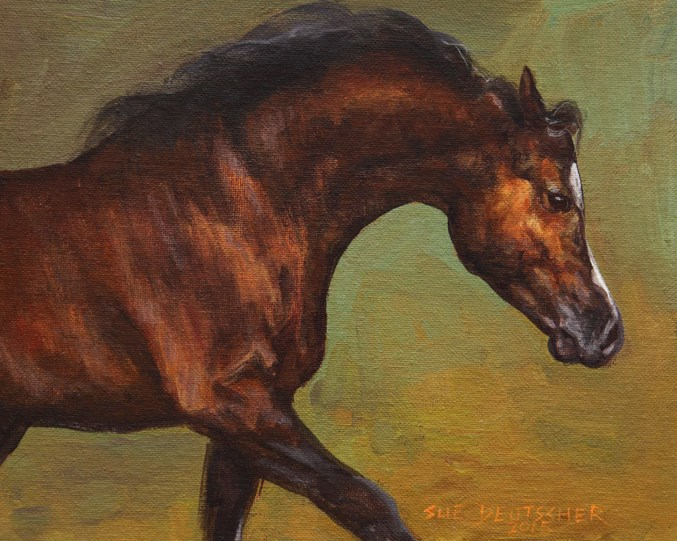 """""""Bay Arabian """" original fine art by Sue Deutscher"""