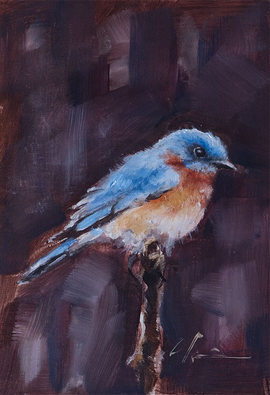 """Bluebird"" original fine art by Clair Hartmann"