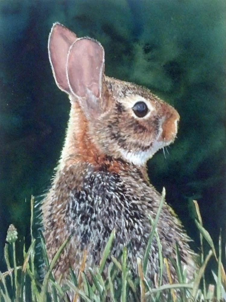 """Young Whitetail Rabbit"" original fine art by Deb Watson"