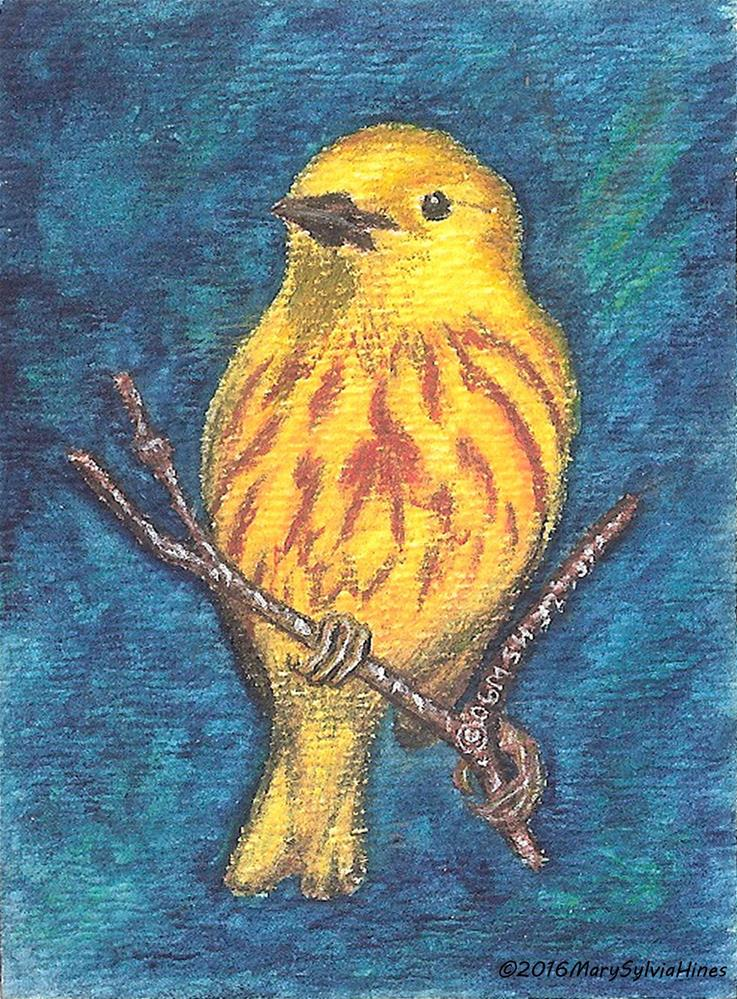"""ACEO--Yellow Warbler 01"" original fine art by Mary Sylvia Hines"