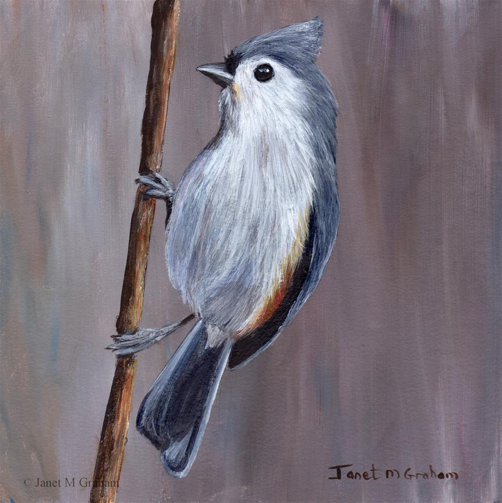 """Tufted Titmouse No 7"" original fine art by Janet Graham"