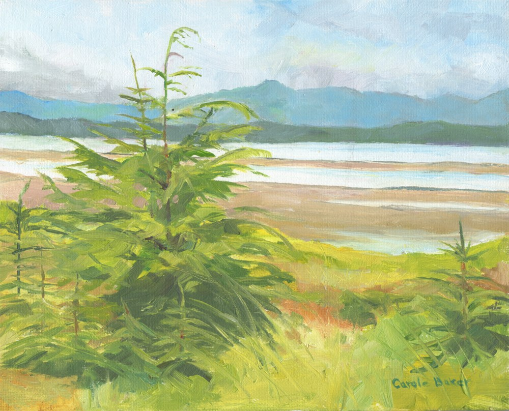 """Eagle Beach"" original fine art by Carole Baker"