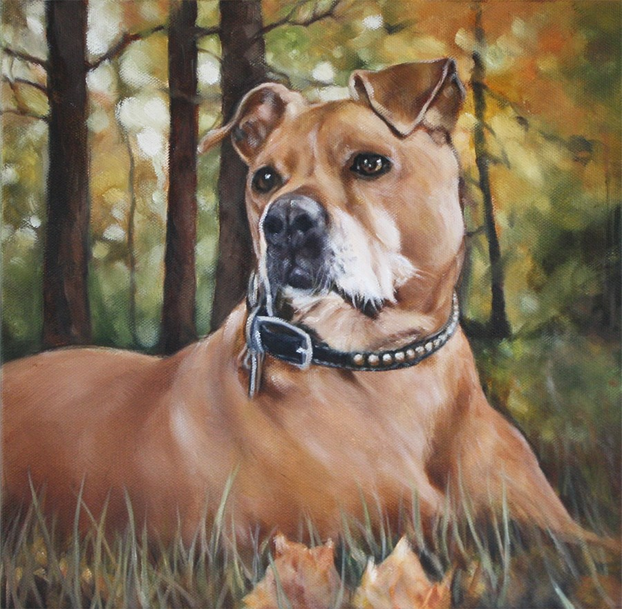 """Splendor in the Grass"" original fine art by Carolyn McQuarters"