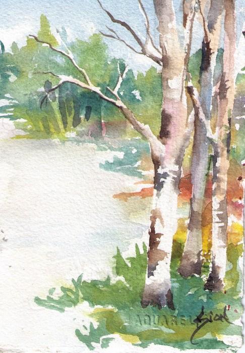 """Caroline's Lake"" original fine art by Sue Dion"