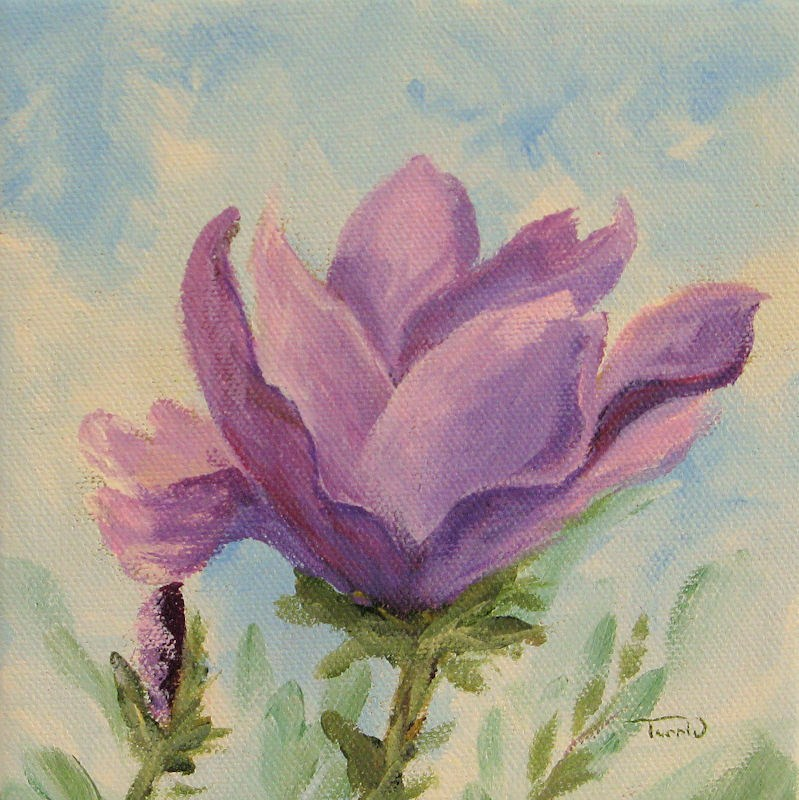 """Japanese Magnolia"" original fine art by Torrie Smiley"