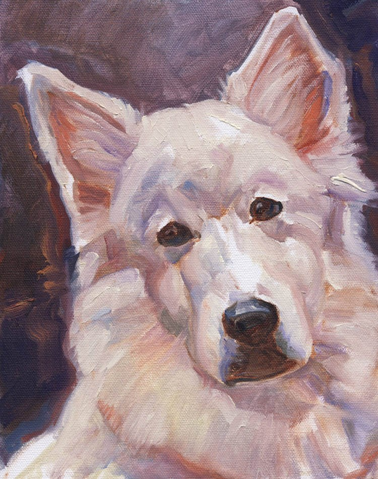 """White Dog"" original fine art by Shawn Shea"