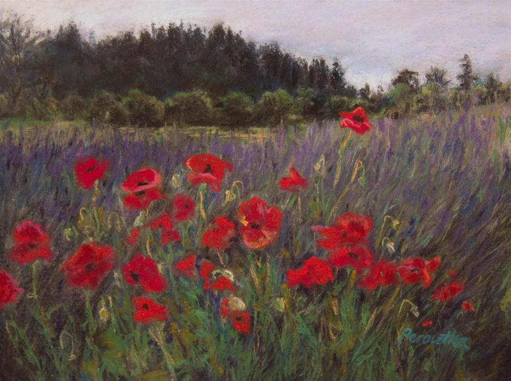 """Poppies Up Front"" original fine art by Sarah Peroutka"