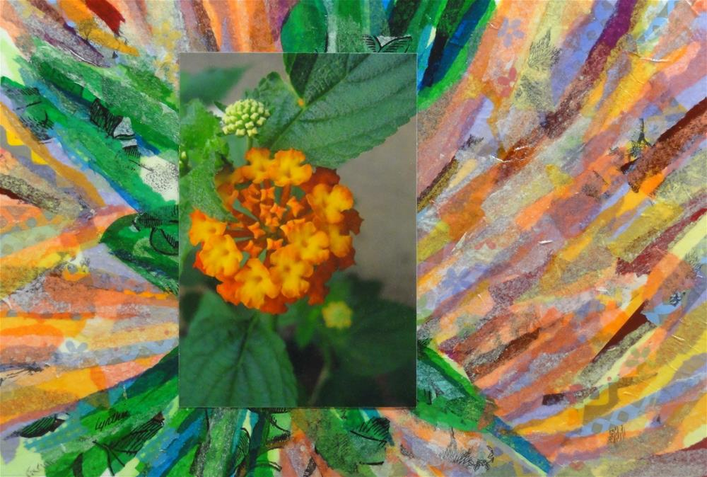"""Spanish Flag Lantana"" original fine art by Cynthia Frigon"