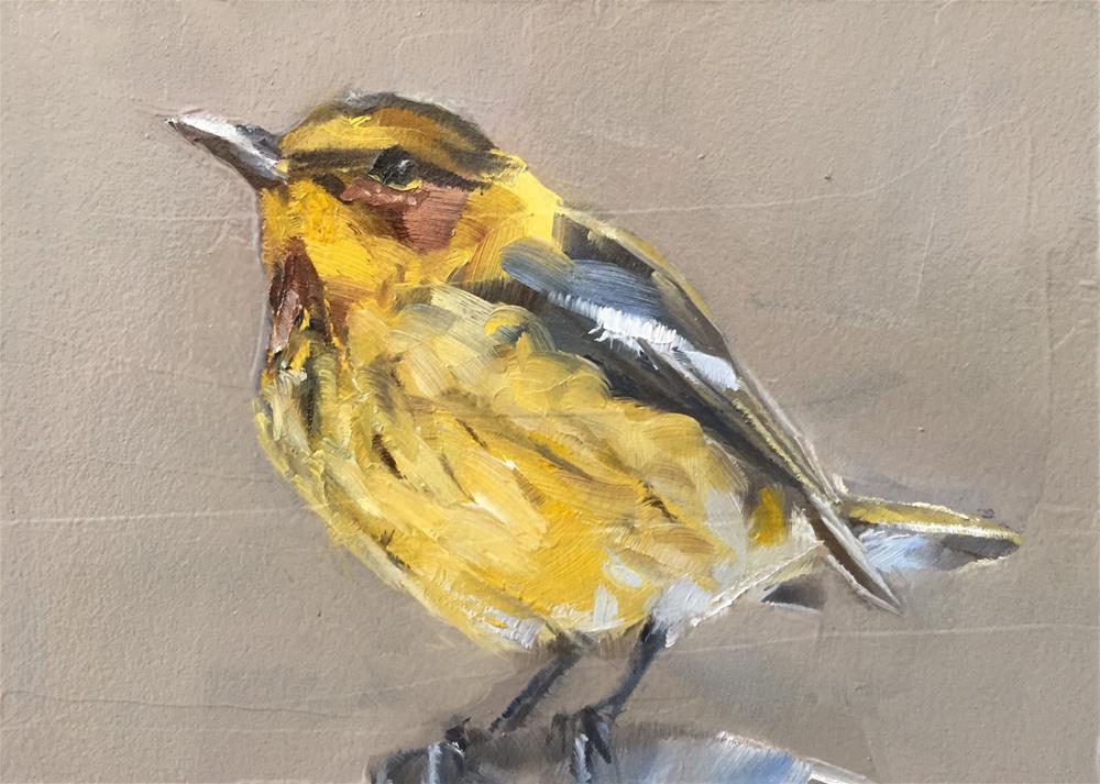 """Cape May Warbler"" original fine art by Gary Bruton"
