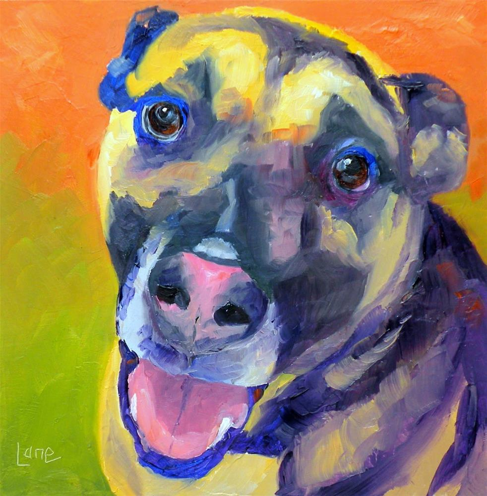 """SCOUT 93/101 OF 101 PET PORTRAITS IN 101 DAYS © SAUNDRA LANE GALLOWAY"" original fine art by Saundra Lane Galloway"