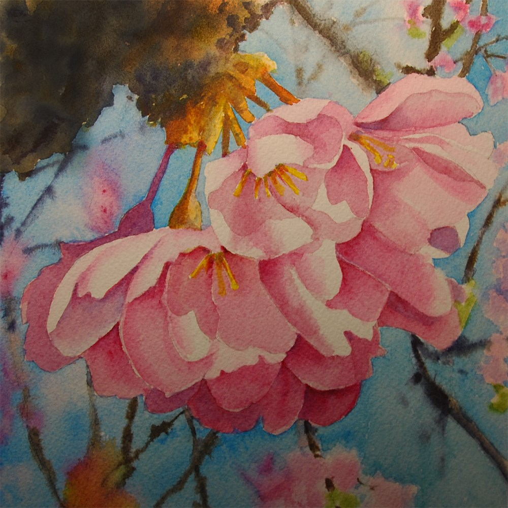 """Cherry Blossoms"" original fine art by Mary Anderson"