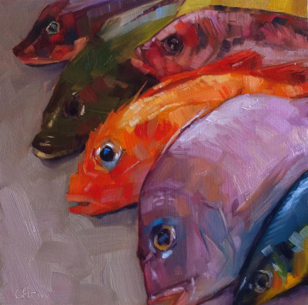 """rainbow fishes"" original fine art by Catherine Harley"