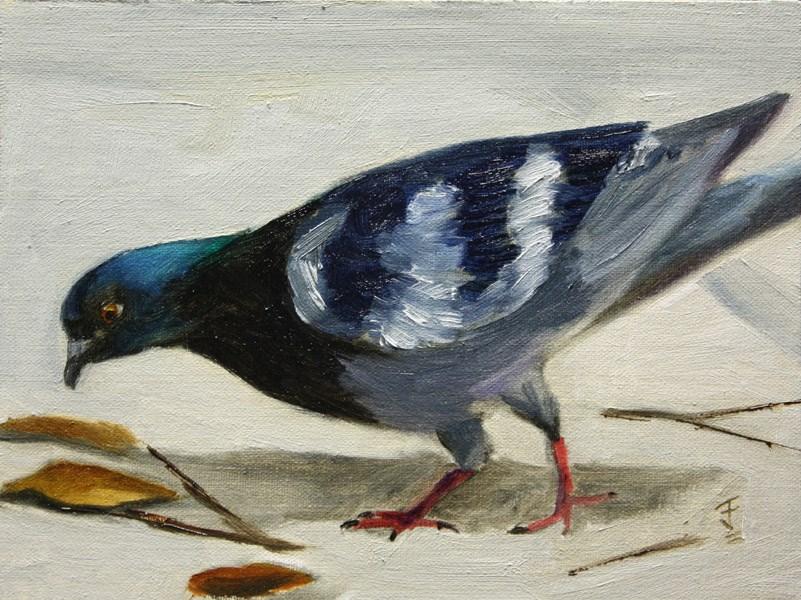 """Austin Pigeon"" original fine art by Jane Frederick"