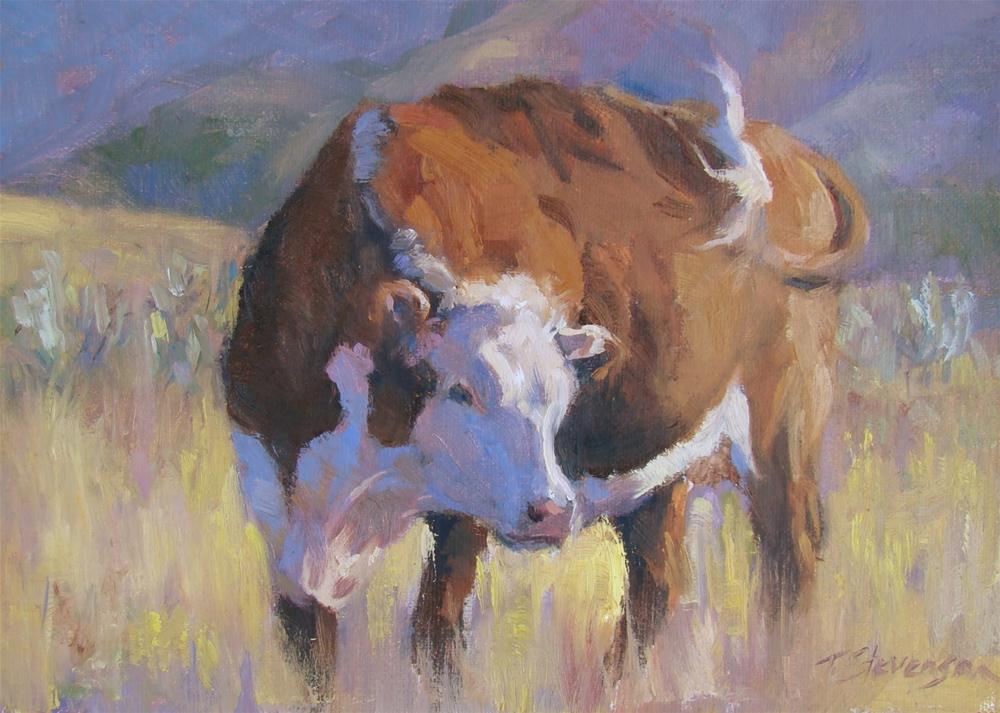 """Hereford Afternoon"" original fine art by Trish Stevenson"
