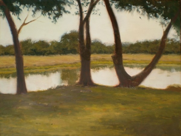 """Cove Trees"" original fine art by Weston Hobdy"