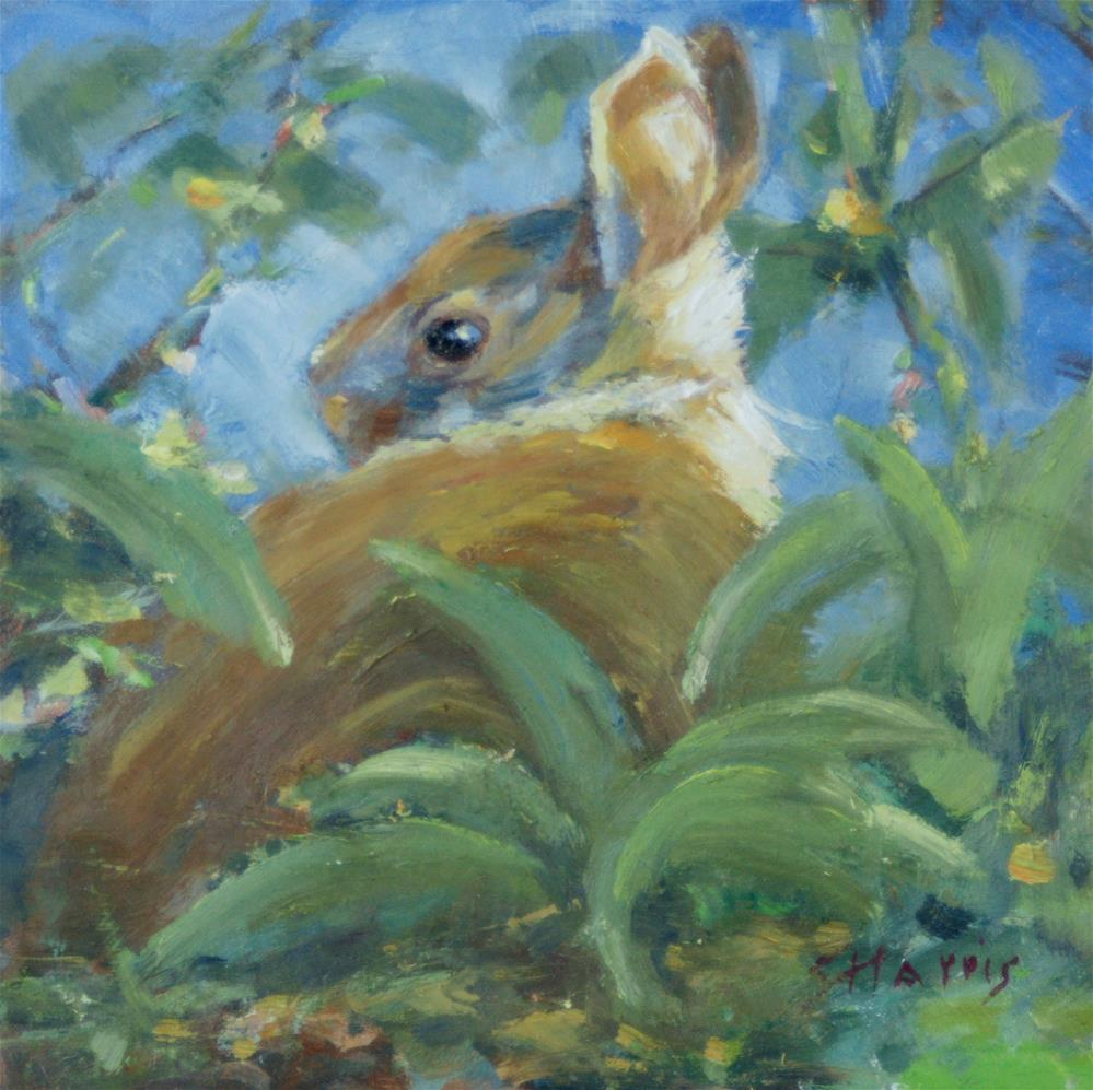 """Garden Bunny"" original fine art by Sandra L Harris"