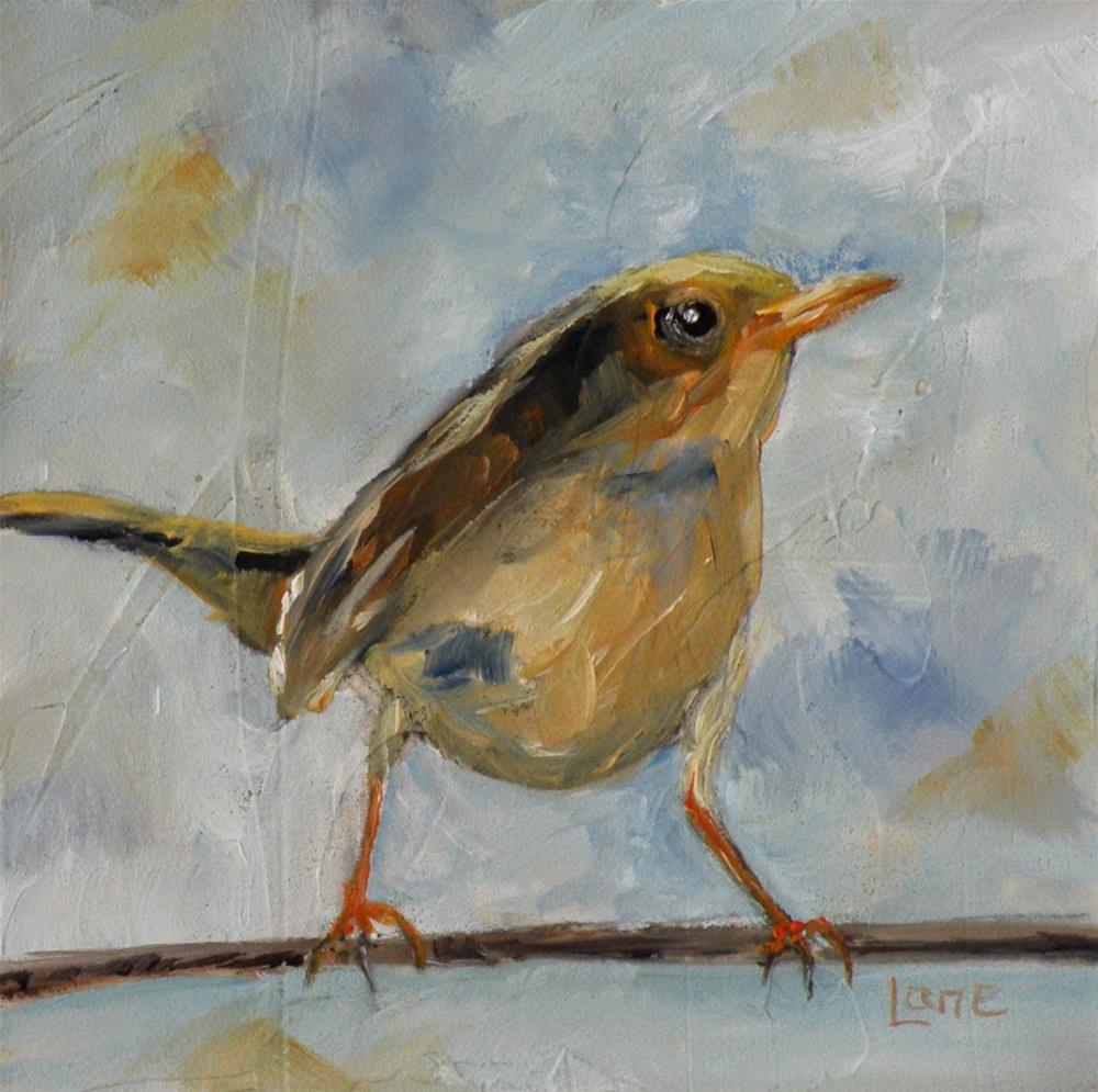 """WREN II ORIGINAL OIL ON TEXTURED PANEL © SAUNDRA LANE GALLOWAY"" original fine art by Saundra Lane Galloway"