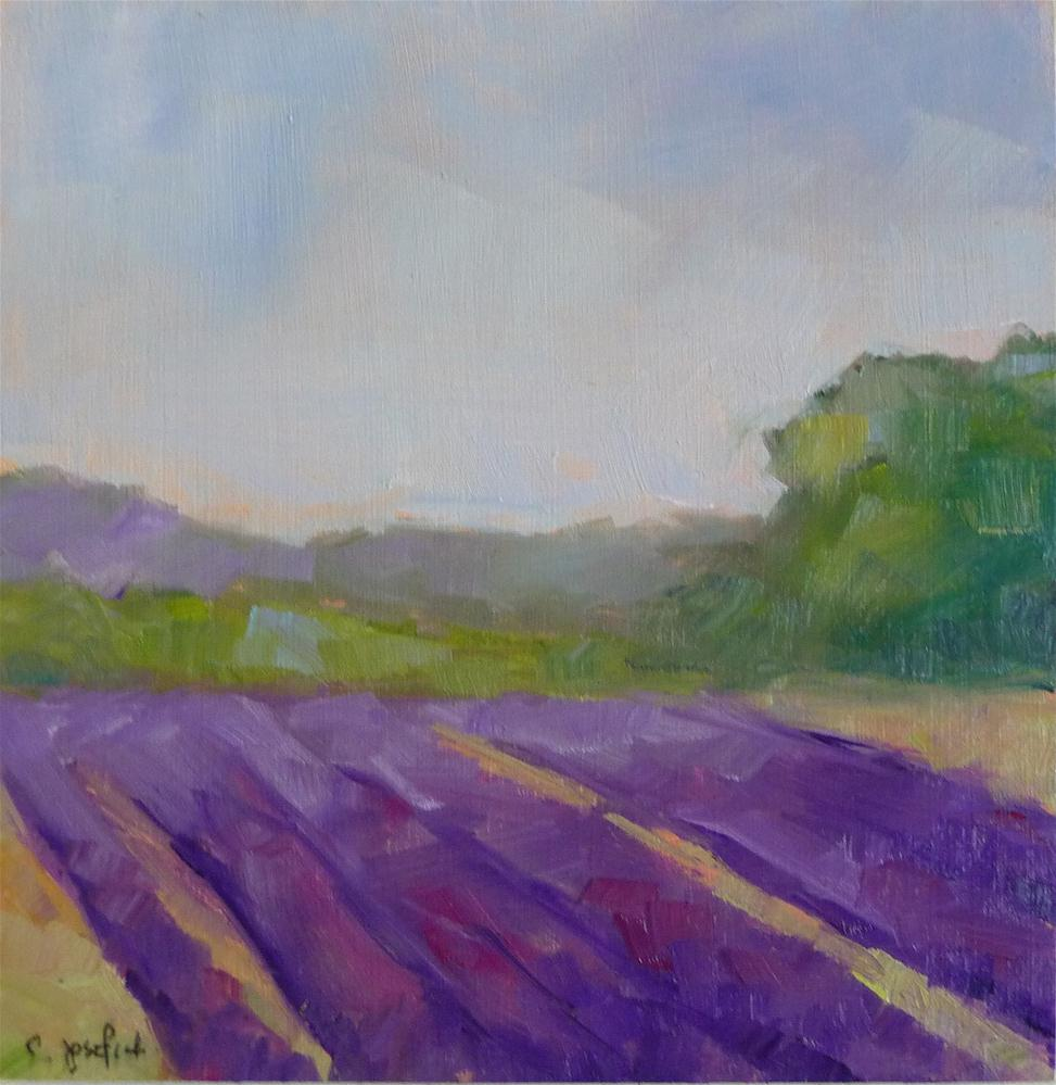 """Lavender Fields"" original fine art by Carol Josefiak"