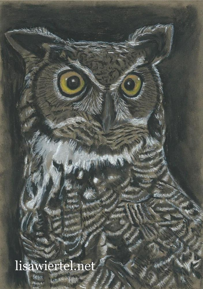 """""""Great Horned Owl"""" original fine art by Lisa Wiertel"""