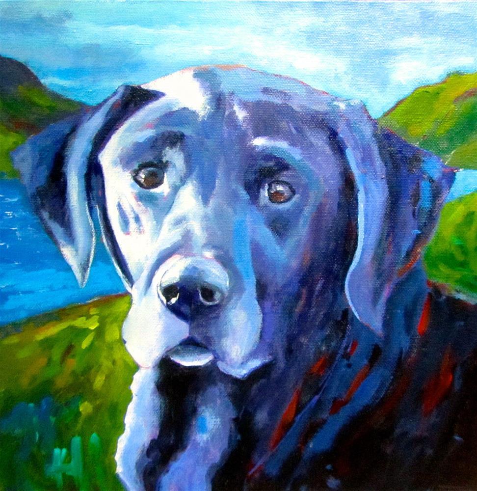 """Skye"" original fine art by Patricia MacDonald"