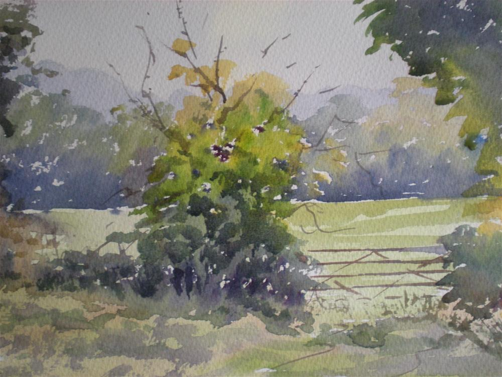 """Before the next belt of rain"" original fine art by Graham Findlay"