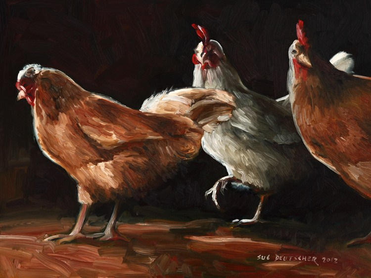 """Three Chickens"" original fine art by Sue Deutscher"