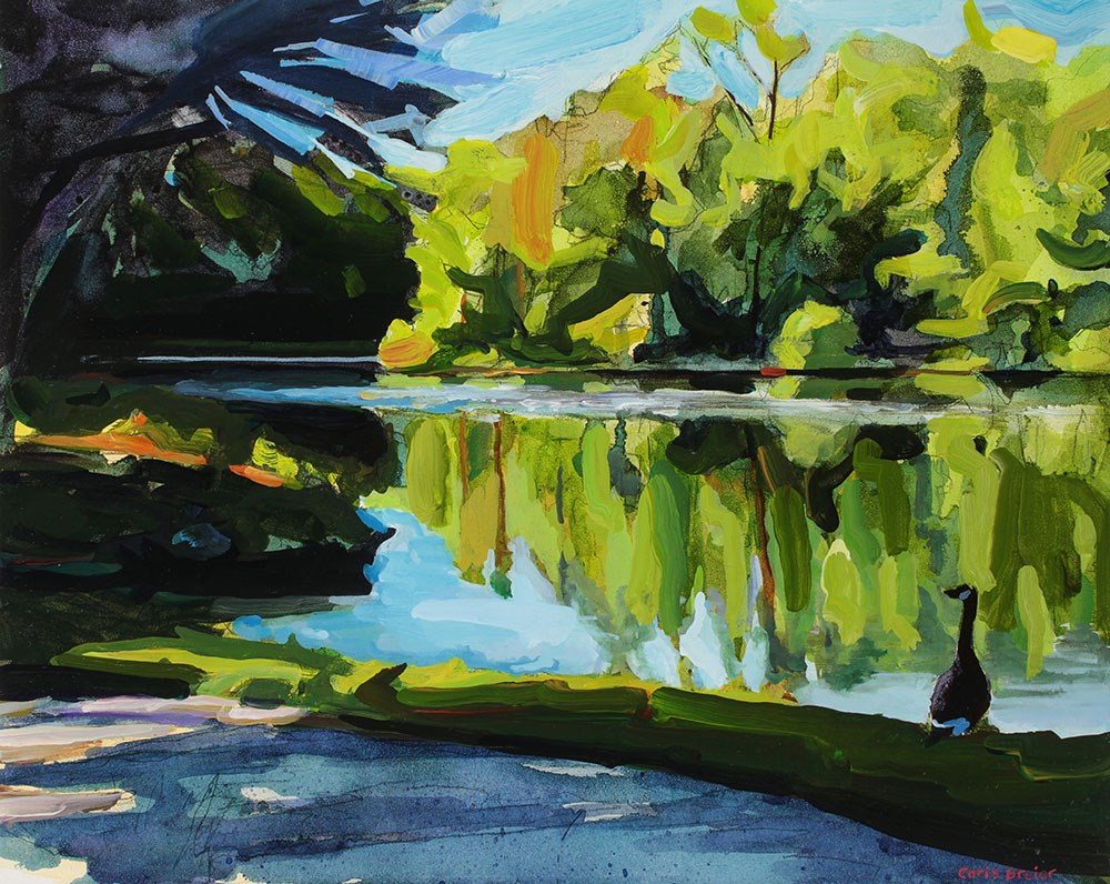 """Summer at Lake Audubon"" original fine art by Chris Breier"