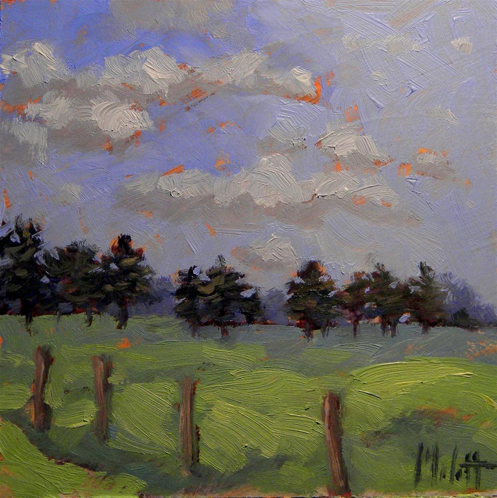 Clouds Landscape Ranch Pine Trees Contemporary Impressionism original fine art by Heidi Malott