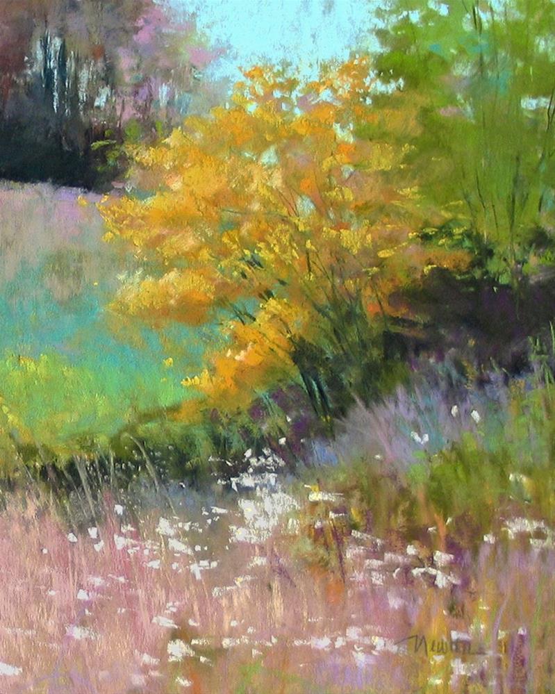 """Wild Meadow"" original fine art by Barbara Benedetti Newton"