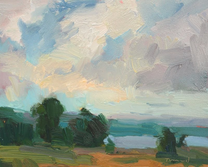 """""""Lopez Sky NFS"""" original fine art by Kathryn Townsend"""