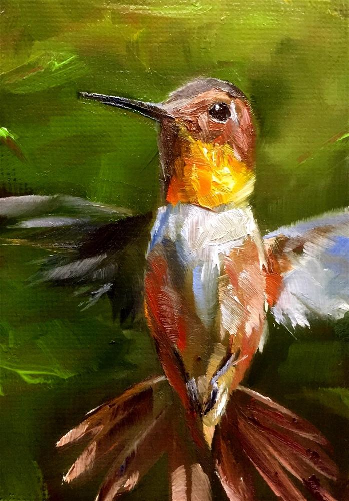 """Rufous Hovering"" original fine art by Gary Bruton"