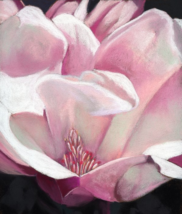 """magnolia flower painting"" original fine art by Ria Hills"