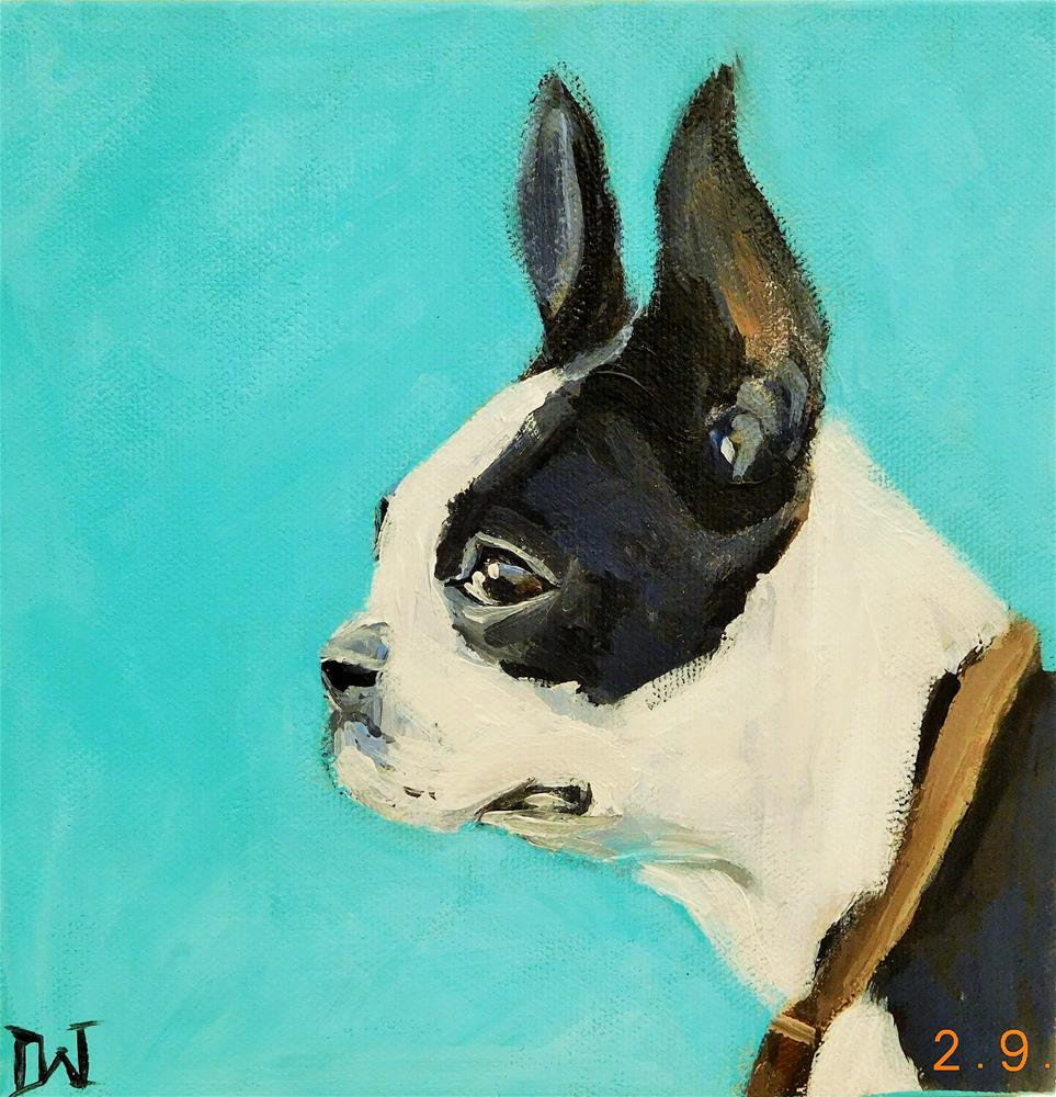 """Boston Terrier 1"" original fine art by Daryl West"