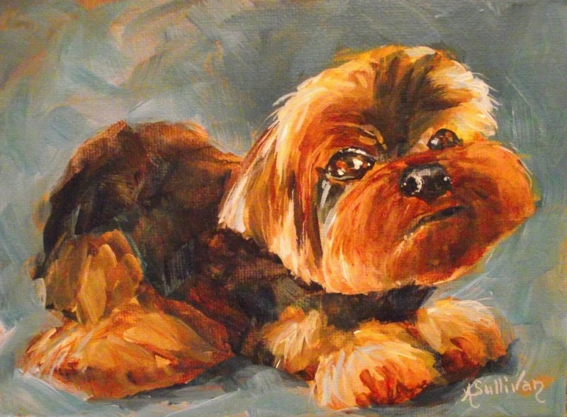 """Sadie"" original fine art by Angela Sullivan"