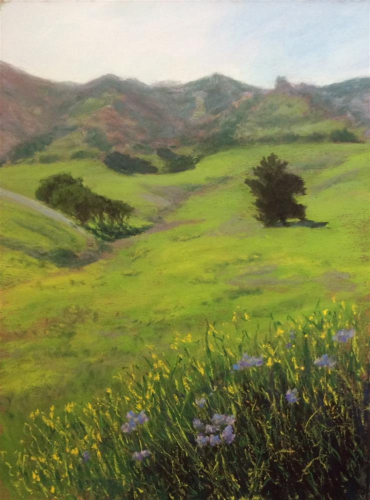 """Davis Ranch Vista"" original fine art by Marti Walker"