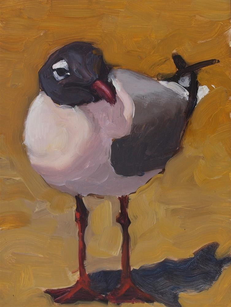 """Blackheaded Seagull by Rick Nilson"" original fine art by Rick Nilson"