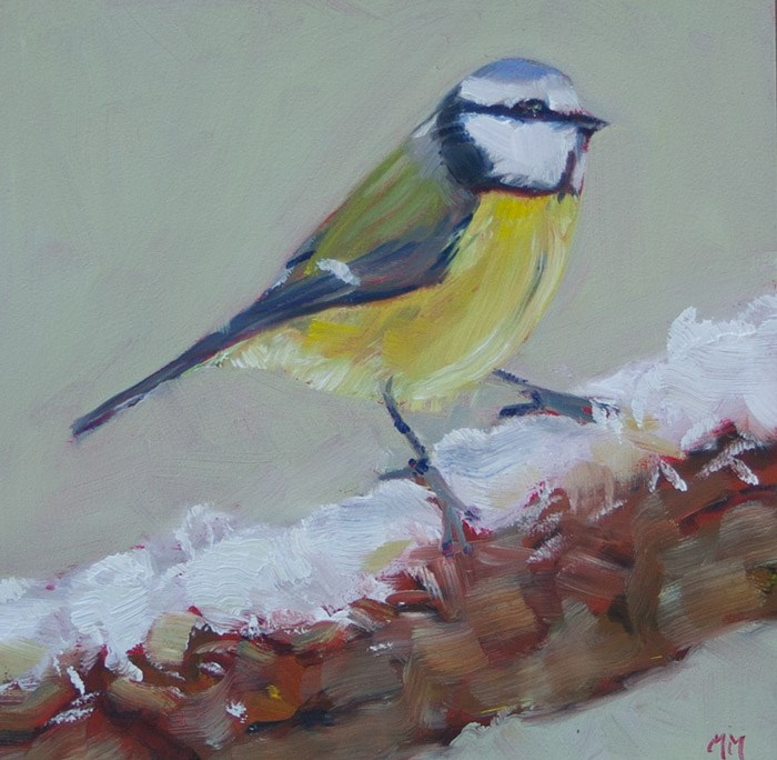 """Snowy Titmouse"" original fine art by Maria McNitt"
