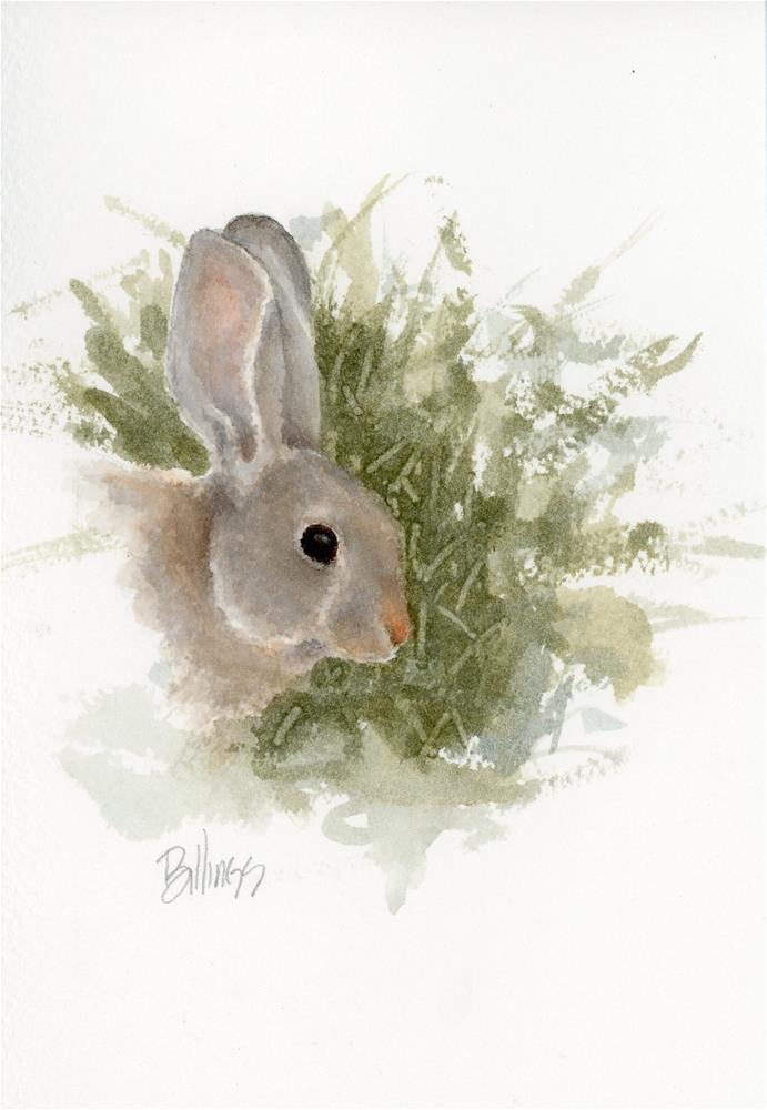 """Yet Another Cottontail Study I"" original fine art by Susanne Billings"