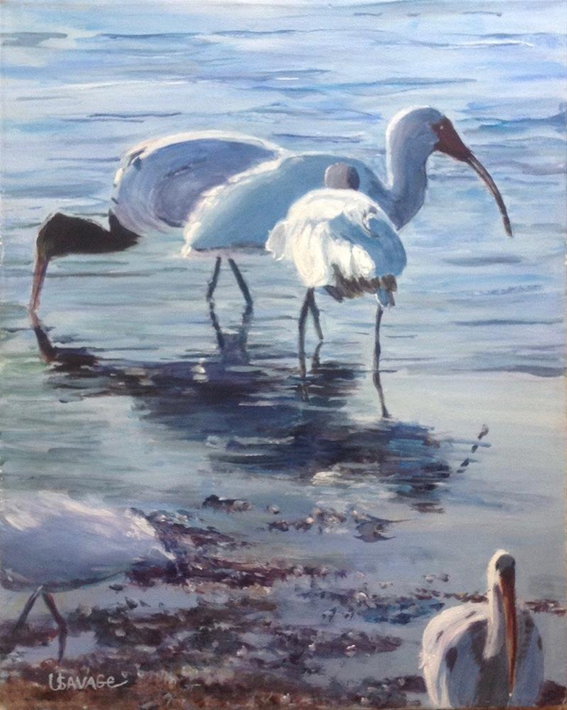 """Three Ibis Wading"" original fine art by Judy Usavage"