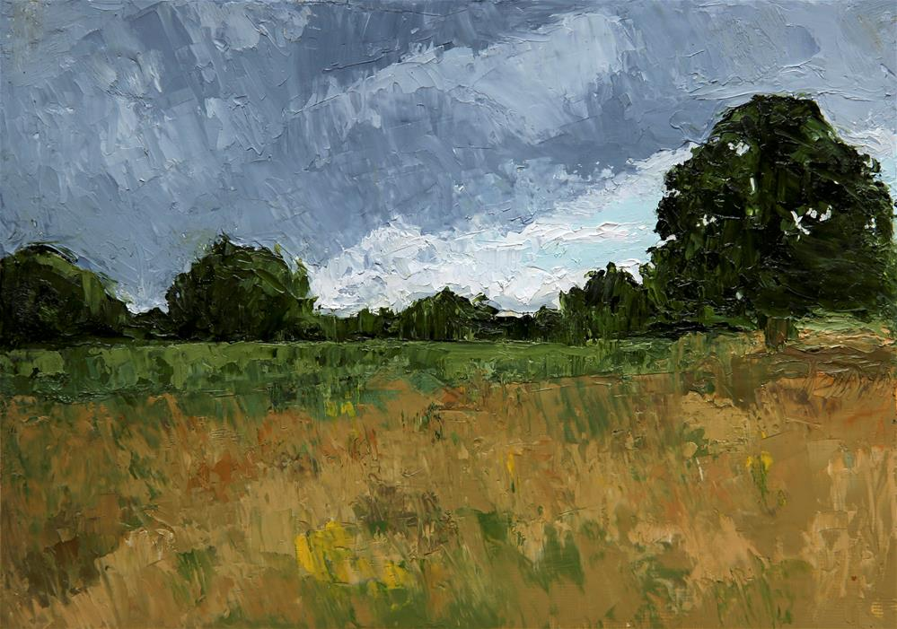 """Summer Storm"" original fine art by Jethro Knight"