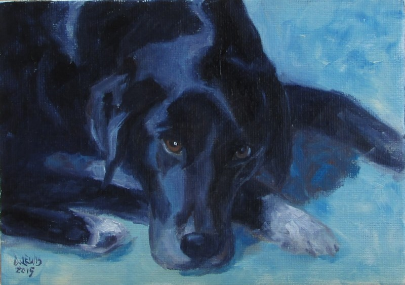"""Mac"" original fine art by Christine Lewis"
