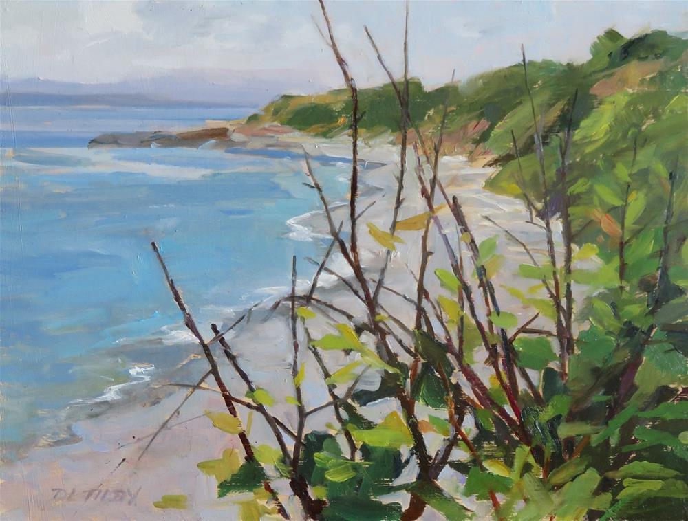"""Dallas Road Beach"" original fine art by Deborah Tilby"